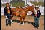 Utah State Fair